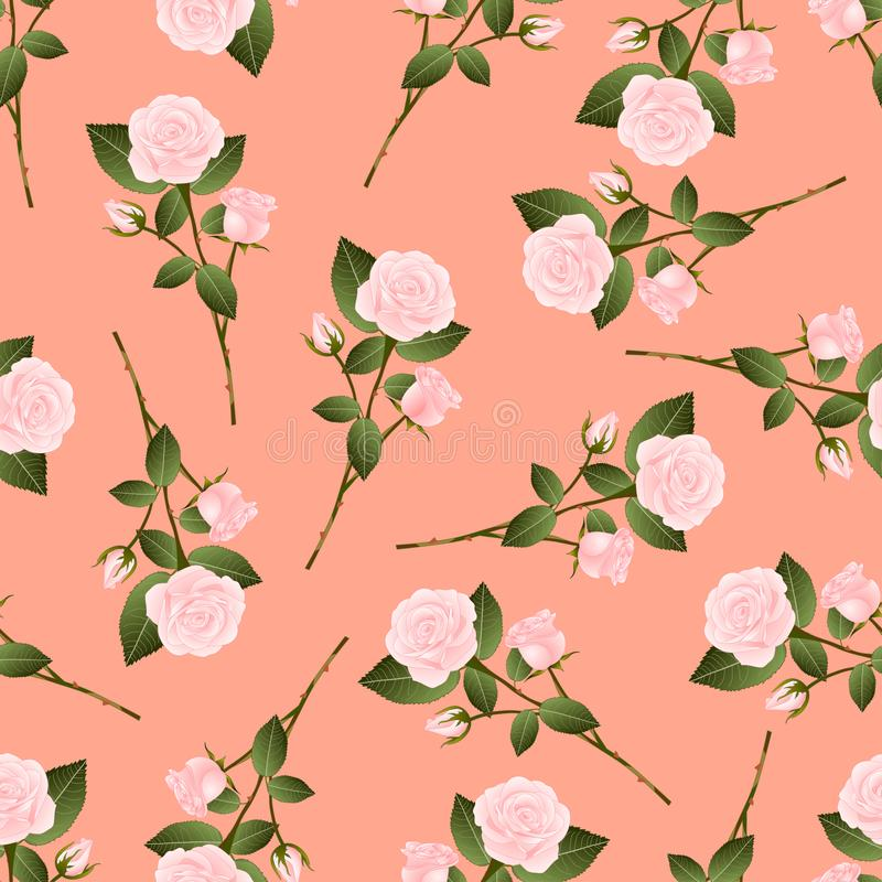 Pink Rose Bouquet on Orange Peach Background. Vector Illustration royalty free illustration