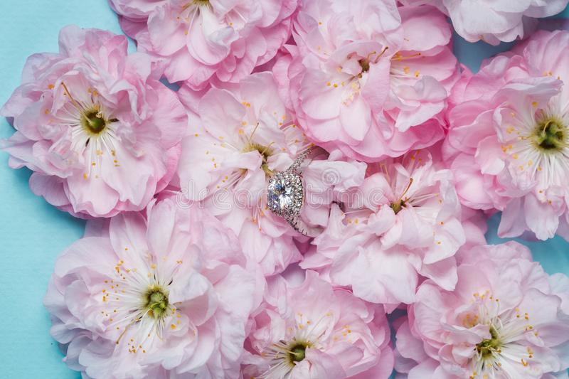 White gold ring with diamonds inside tender pink rose petals royalty free stock photo