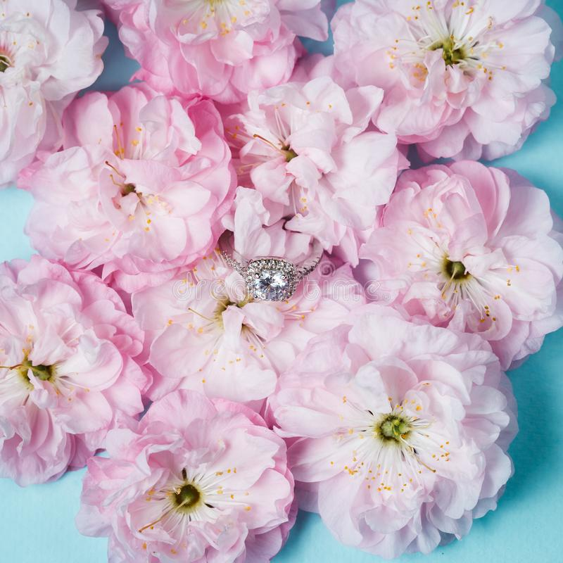White gold ring with diamonds inside tender pink rose petals royalty free stock image