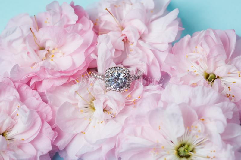 White gold ring with diamonds inside tender pink rose petals royalty free stock photography
