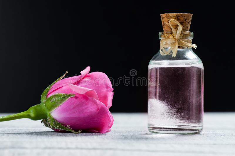 Pink rose flower and glass of bottle essential oil or rose water with rose petals. Spa and aromatherapy cosmetic concept royalty free stock photography