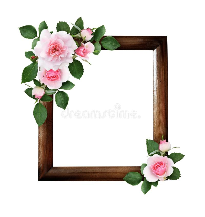 Pink rose flowers and green leaves in a corner floral arrangements on brown wooden frame stock illustration