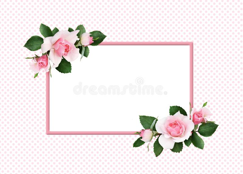 Pink rose flowers and green leaves in a floral corner arrangement and a frame stock illustration