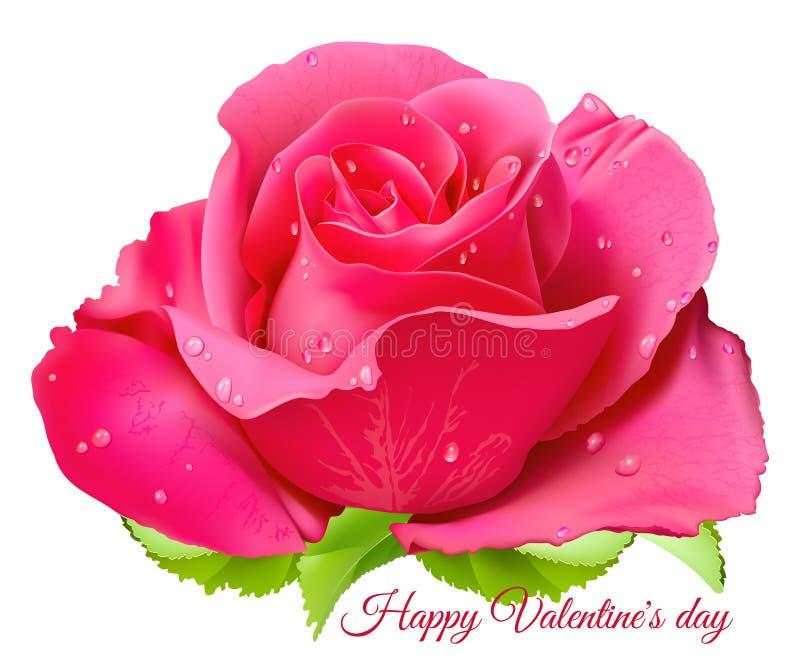 Pink rose. Happy Valentine day. royalty free illustration