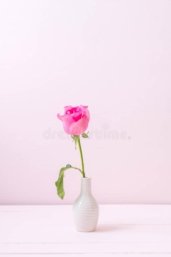 Free Pink Rose In Vase On Wood Background Royalty Free Stock Image - 117501976
