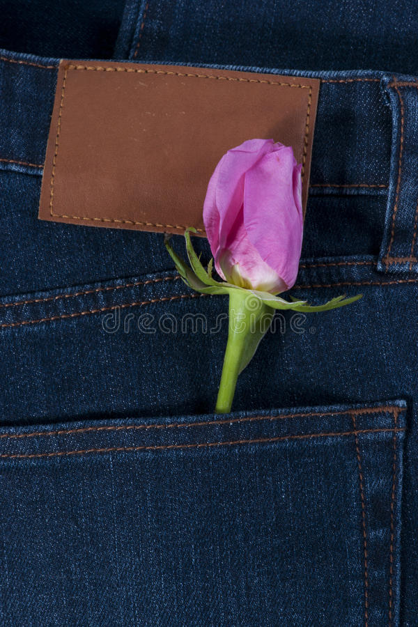 Download Pink Rose In The Jean Pocket Stock Image - Image: 26526117