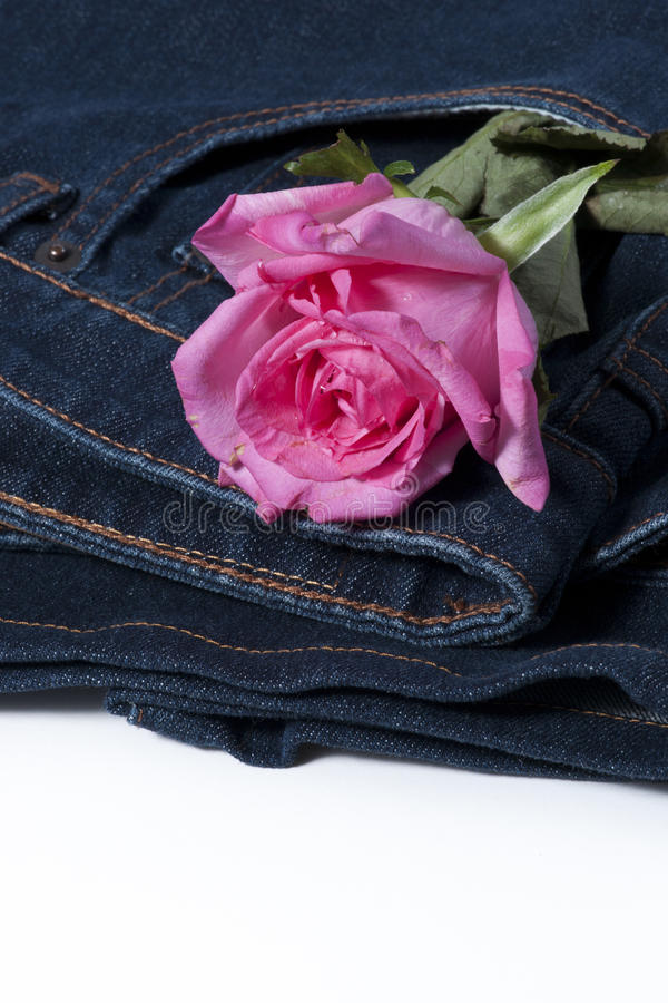 Download Pink Rose In The Jean Pocket Stock Photo - Image of concept, fashion: 26526320