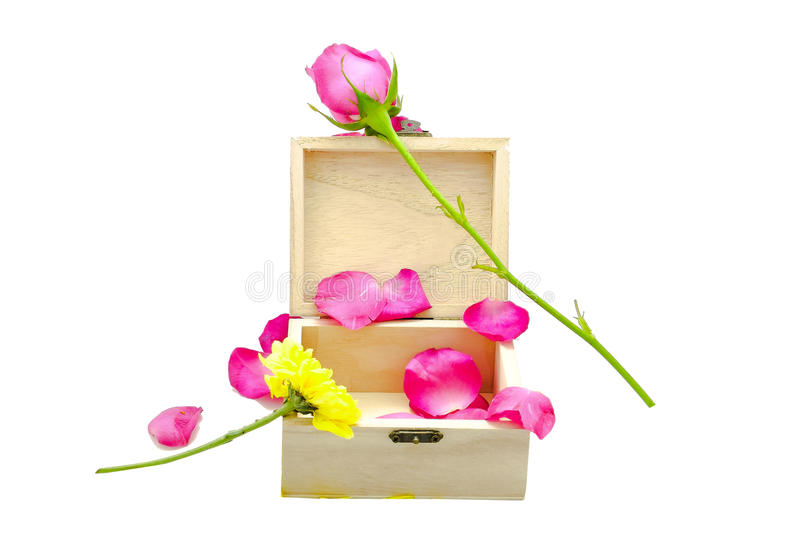 Pink rose on little wooden box royalty free stock photo