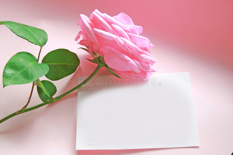 Pink Rose Message Royalty Free Stock Photography