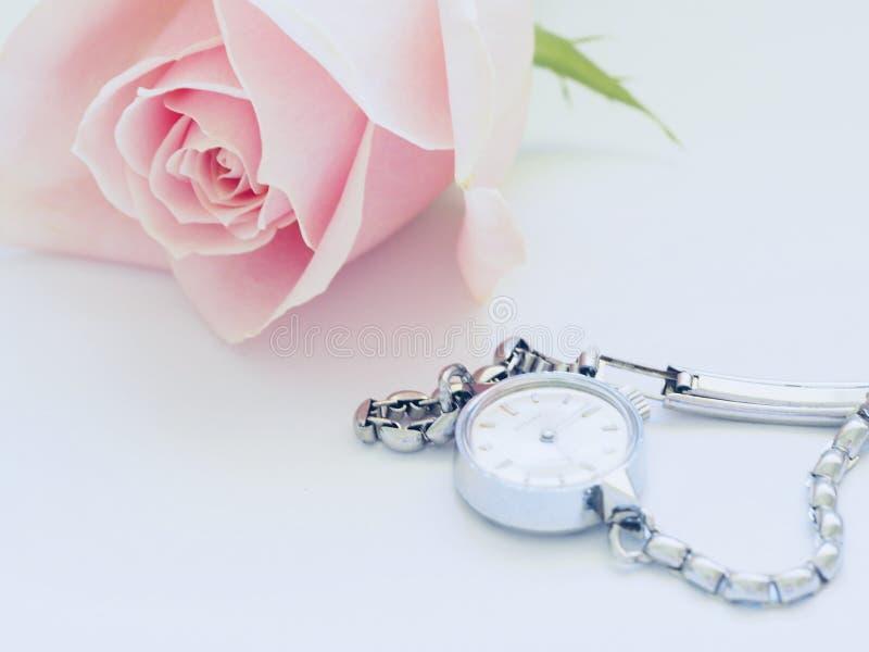 Pink Rose Near Watch stock photo