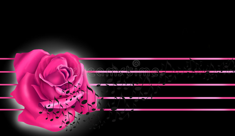 Pink rose and notes royalty free stock photo