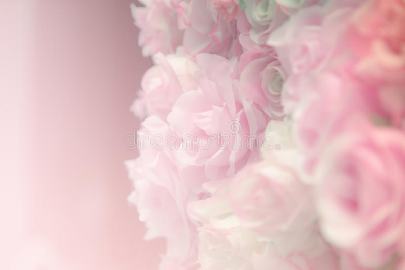 Pink rose pastel stock photography