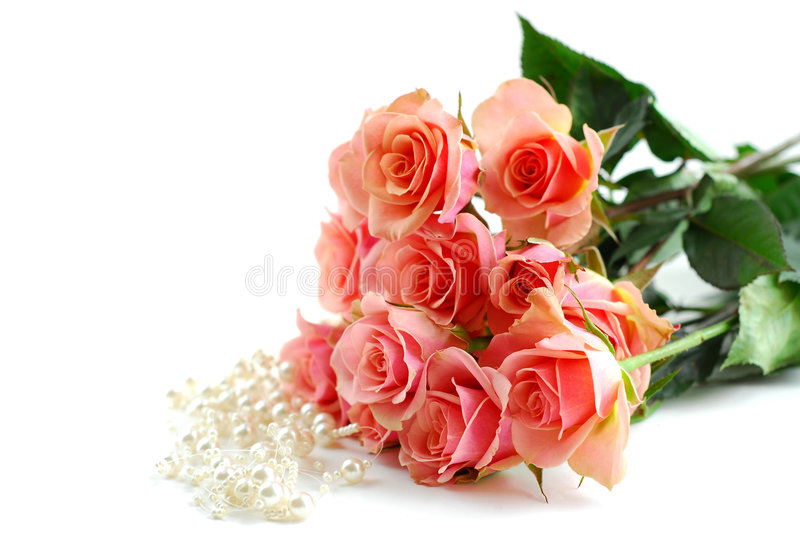 Download Pink rose pearls stock photo. Image of card, leaf, jewelry - 700458