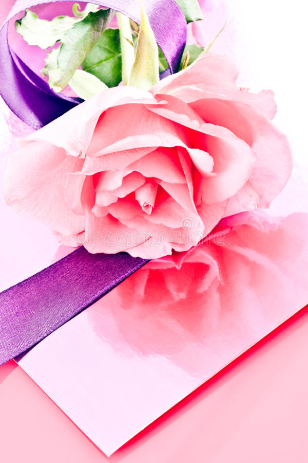 Download Pink rose and ribbons stock photo. Image of card, lying - 31768756