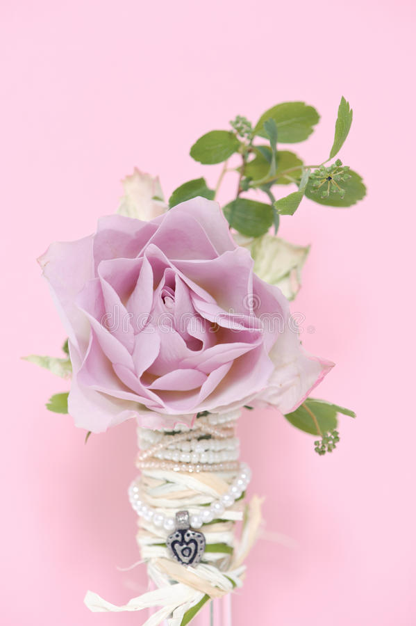 Download Pink rose stock image. Image of shadow, love, bottle - 34619003