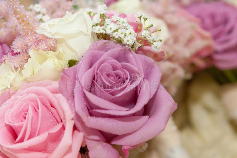 Pink roses in brides bouquet stock photos