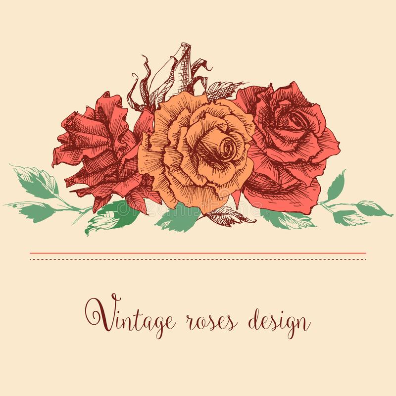 Pink roses bunch of flowers stock illustration