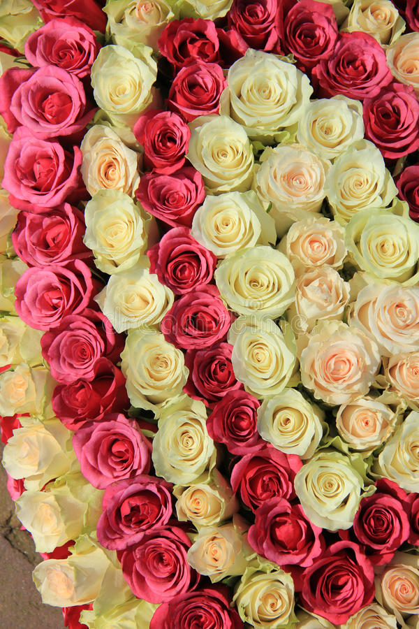 Pink Roses In Different Shades In Wedding Arrangement Stock Image ...