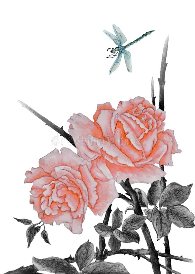 Pink roses and dragonfly. Watercolor with a pair of beautiful pink roses and blue dragonfly near them. Illustration executed in traditional chinese style royalty free illustration