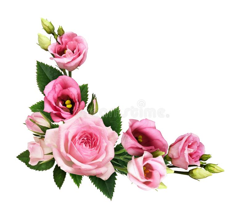 Pink roses and eustoma flowers and buds in a floral corner arrangement royalty free stock photos