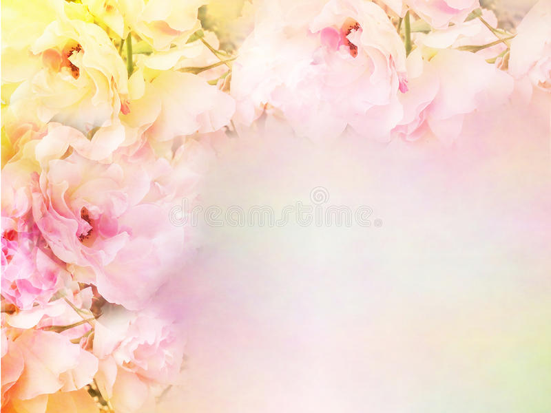 pink roses flower border and frame in vintage color for valentine background stock photo
