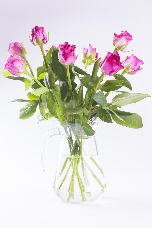 Download Pink Roses In Glass Jug On White Background Royalty Free Stock Photography - Image: 34707897