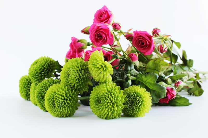Pink roses green flowers bouquet background royalty free stock images