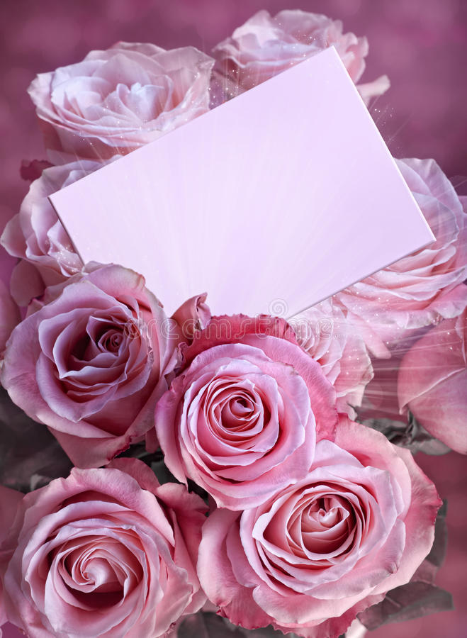 Pink roses with a greeting card royalty free stock photo