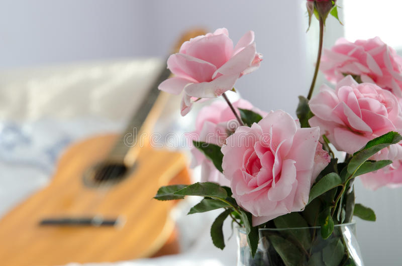 Pink roses. With guitar in blur stock images