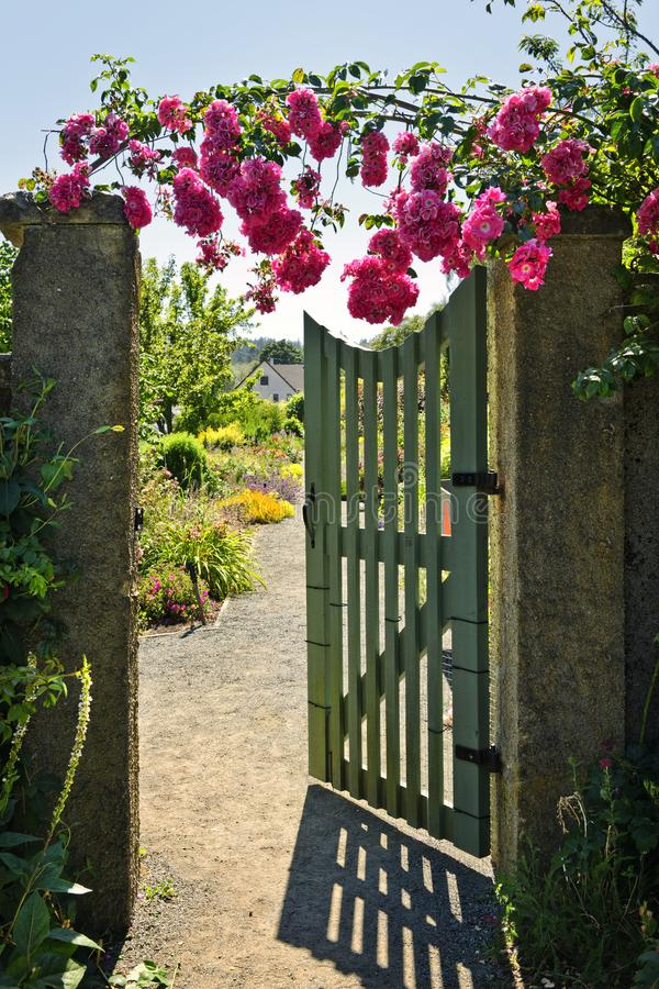 Open garden gate with roses royalty free stock photo