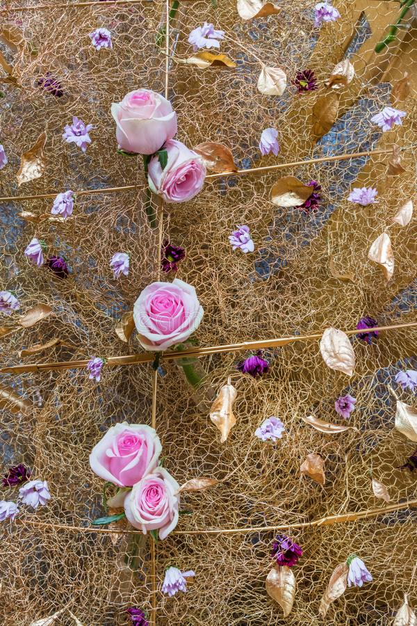 Roses on the mesh wire royalty free stock photos