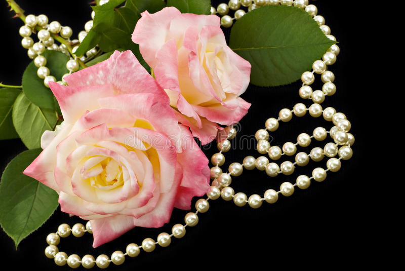 Pink Roses and Pearls. Beautiful pink roses with elegant pearls on a black background, perfect for Mother's Day royalty free stock photos