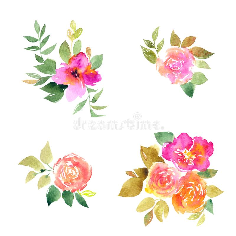 Pink roses. Watercolor flowers set for greeting card decor. Drawing roses. Wedding invitation floral design. royalty free stock photography
