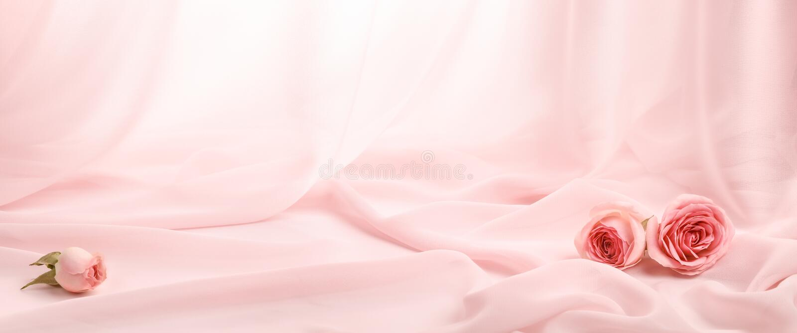Pink roses on soft silk royalty free stock photos
