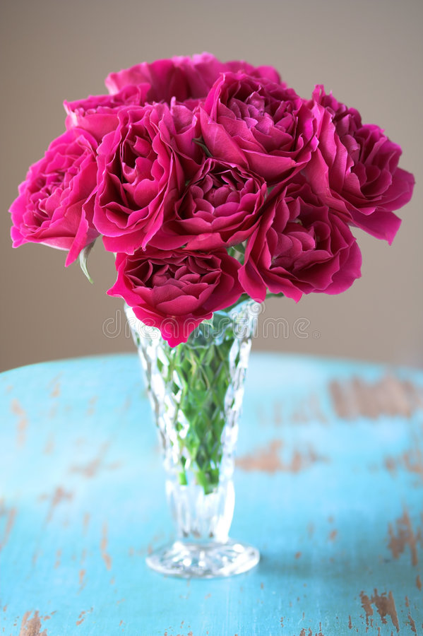 Pink Roses in Vase royalty free stock photography