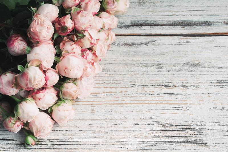 Pink bush roses on vintage wooden background with copy space for text. Wedding floral frame stock photography