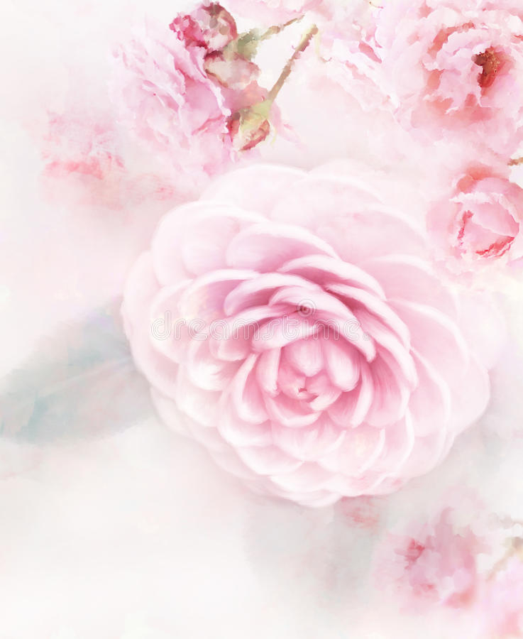 Pink Roses Watercolor stock illustration