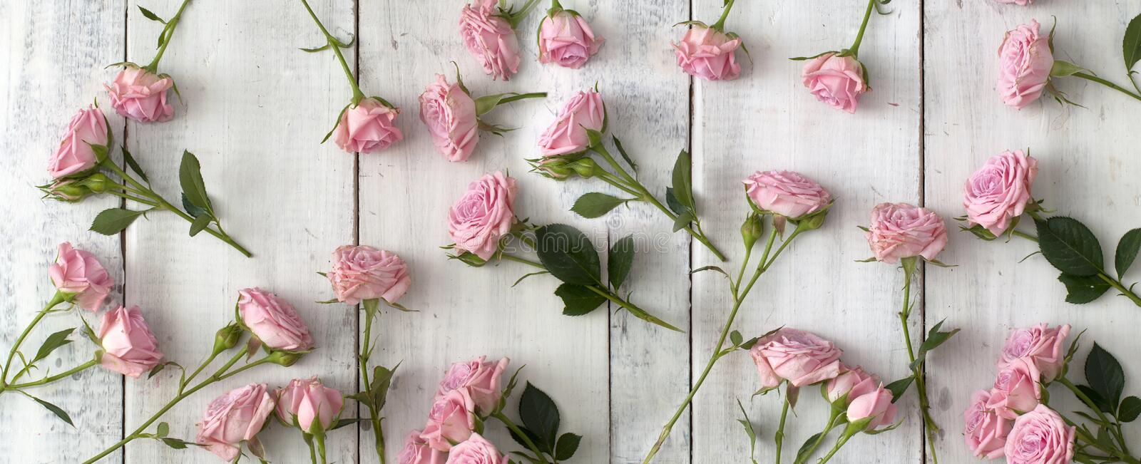 Pink roses on wooden background royalty free stock photography