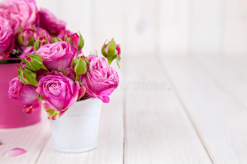 Pink rosespeony in vase on white wooden background. flowers royalty free stock photo