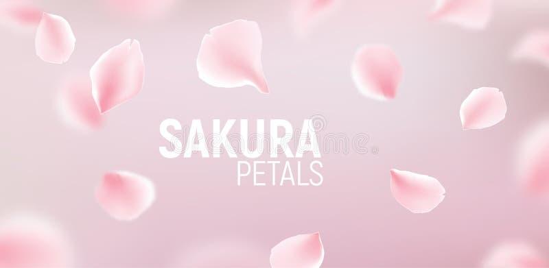 Pink sakura petals falling flower vector background. Romantic blossom sakura flower petals royalty free illustration