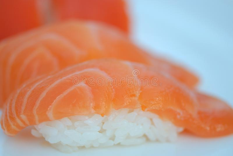 Pink Salmon royalty free stock photography