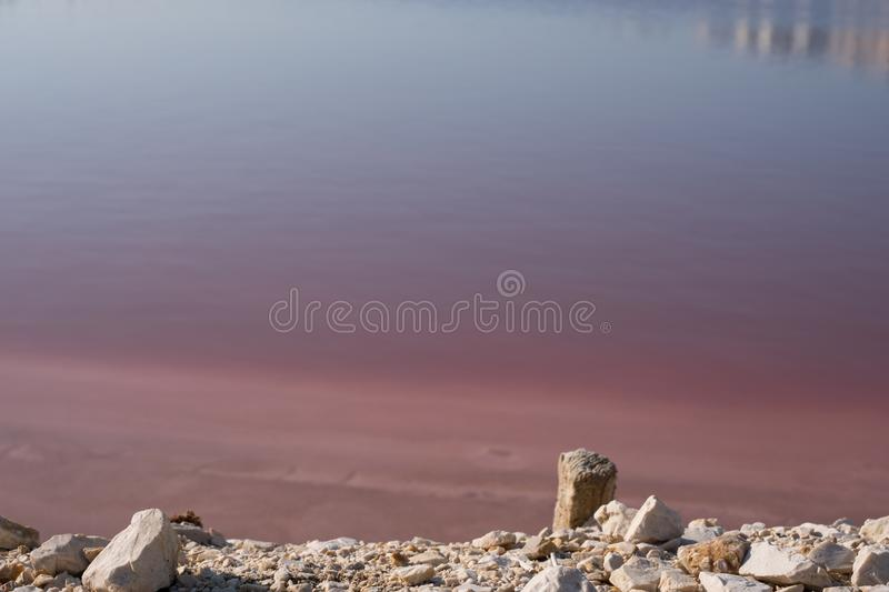 Pink salt lakes at Margherita Di Savoia in Puglia, Italy. Water is pink crustaceans that live in it. Pink salt flats at Margherita Di Savoia, north of Bari in royalty free stock image