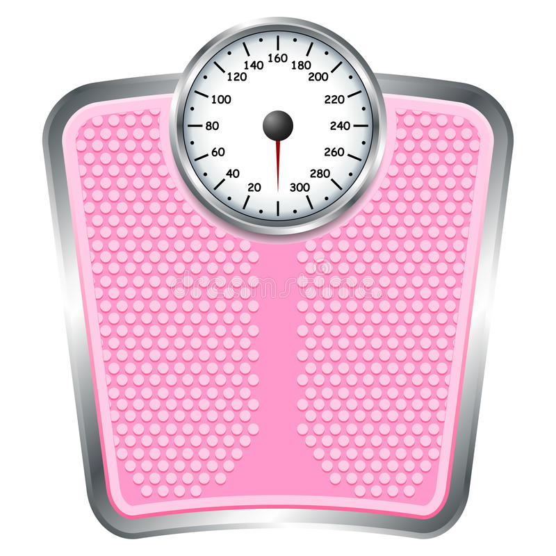 Download Pink scale stock vector. Image of scale, measurement - 21961635