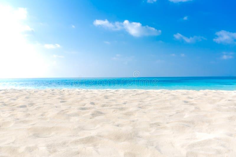 pink scallop seashell Белый песок, голубое небо и голубое море Концепция пляжа лета каникул и праздника форма copyspace здесь при стоковые изображения