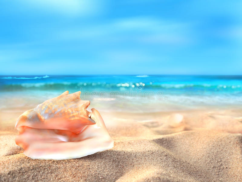 Pink seashell. On the ocean beach royalty free illustration