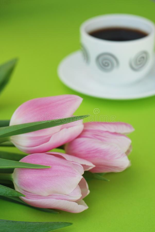 Download Pink Spring Tulips Over A Green Background, In A Flat Lay Composition With Copy Space. Spring Flowers With Cup Of Cofee. Stock Photo - Image of bouquet, beautiful: 111619074