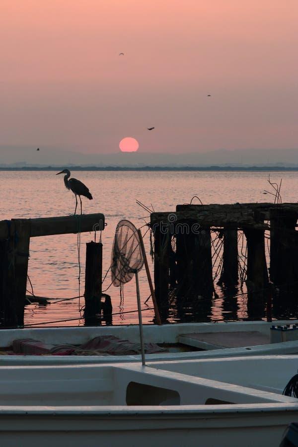 Free Pink Sunrise Stock Photos - 49187013