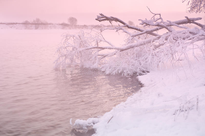 Pink Sunrise On Winter River Royalty Free Stock Image