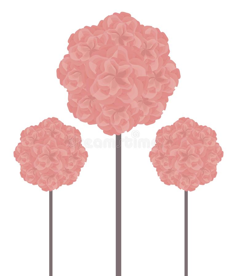 Pink three balls of topiary made from beautiful pink flowers on a brown stalk of a high trunk isolated on white background postcar stock illustration