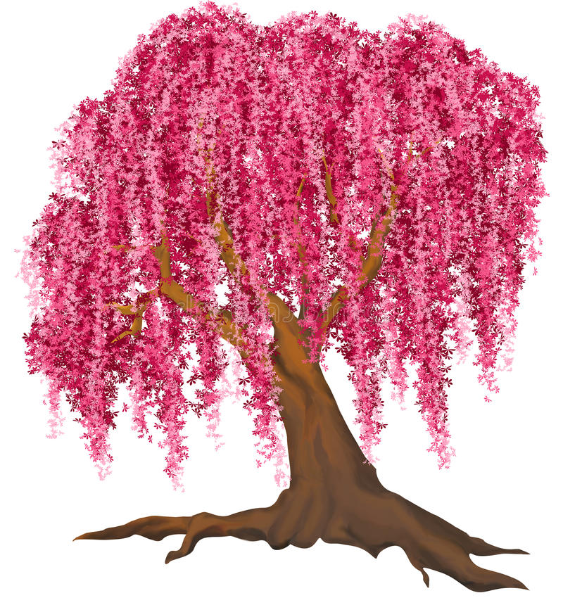 Pink tree. Isolated pink tree with high resolution extra image in png format with transparent background royalty free illustration